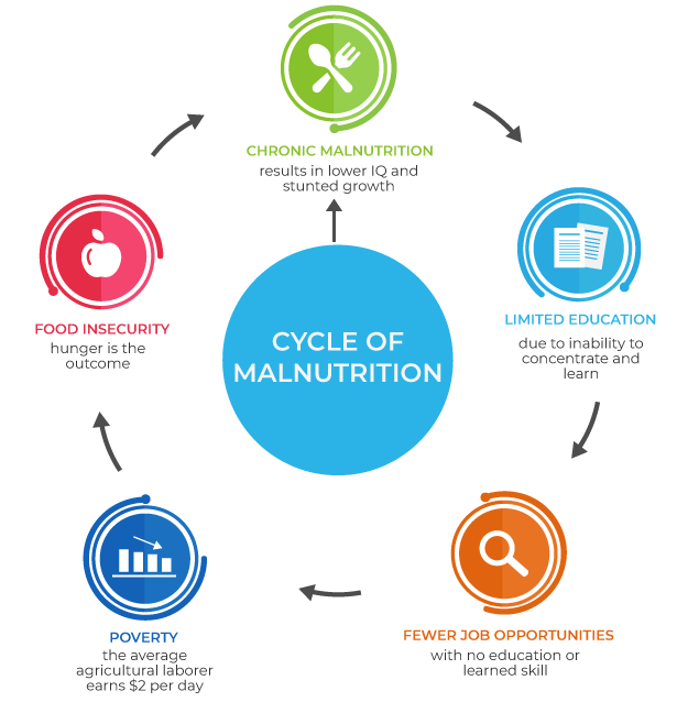 Hospital de la Familia Foundation Cycle of Malnutrition